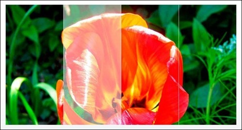 Wordpress 360º Image Slider