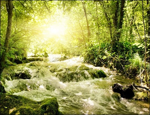 Spring-Stream-spring-wallpaper