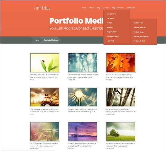 nimble-portfolio[3]